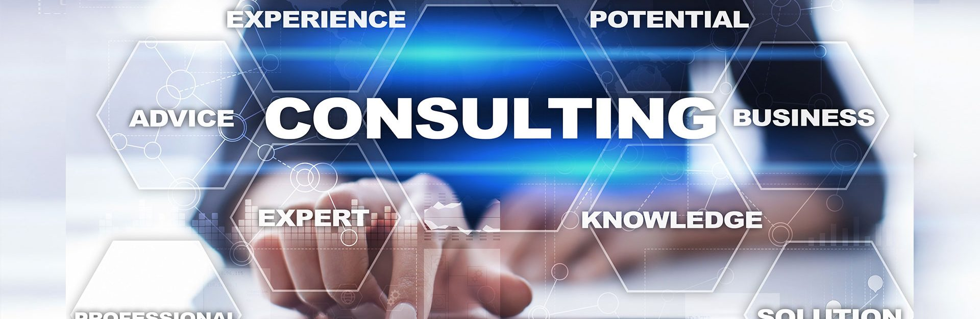 Project consulting services